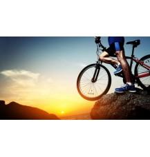 Выбираем спортивный велосипед